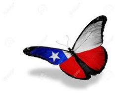 Related image Chilean Flag, Insects, Bee, Animals, Image, Animales, Animaux, Animal, Animais