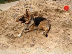 The sand pile!