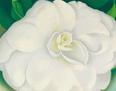 Georgia O'Keeffe White Camellia 1939
