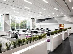 COTY Offices - Mexico City - 3