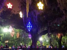 lights in the big Live oaks with Spanish moss