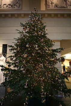Christmas tree, the Queen's Gallery | Flickr - Photo Sharing!