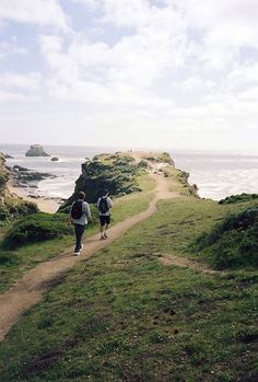 A hiking trail at Point Reyes in Marin County. Point Reyes is a prominent cape and popular Northern California tourist destination on the Pacific coast. (scheduled via http://www.tailwindapp.com?utm_source=pinterest&utm_medium=twpin&utm_content=post186673497&utm_campaign=scheduler_attribution)