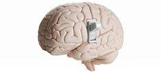 Nicotine Withdrawal Hijacks Brain Connections Tied to Self-Control Nicotine Withdrawal, Red Palm Oil, Brain Connections, Best Brains, Self Control, Addiction Recovery, Brain Health, Bone Health, Chronic Fatigue