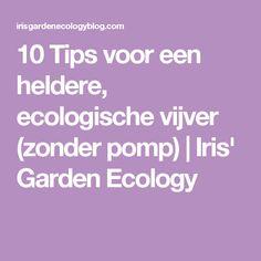10 Tips voor een heldere, ecologische vijver (zonder pomp) | Iris' Garden Ecology