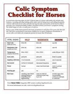 Colic checklist