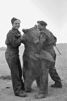 Wojtek, the Soldier Bear, c.1942 - Retronaut (Polish Army)