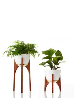 Retro Print Revival · Rocket Planters — The Design Files | Australia's most popular design blog.