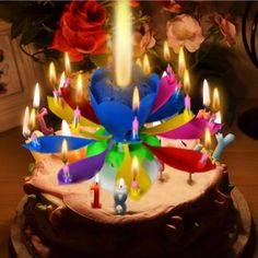 Musical Lotus Flower Happy Birthday Candle Music Party Supplies New 1 Pcs
