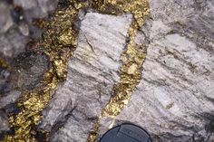 Vein of gold in rock (lode gold deposit)  http://findinggold.org WOW! I would love to find this!