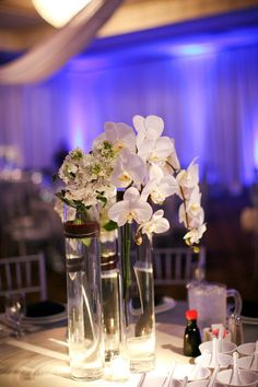 Flowers like these for the guest book signing or seating sheet names Glamorous Centerpieces Wedding Flowers Photos on WeddingWire