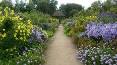 West Dean Gardens 2