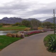Grayhawk Golf Club, Arizona - My favorite all-time course!!!!!