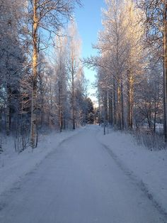 Finland ~ So beautiful. Spring And Fall, Finland, Snow, Winter, Places, Summer, Outdoor, Beautiful, Winter Time
