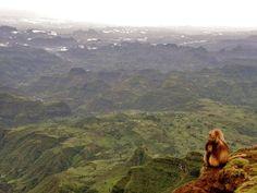 #Semien Mountain in Ethiopia