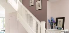 Colours for the hallway - Dulux Paint soft stone for hallway on stairs and upstairs