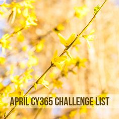 Start Your 365 Project on April with No Foolin' April Photo Challenge, Free Email, Photography Challenge, April 1st, Project 365, Photo A Day, Daily Photo, How To Take Photos, Free Photos