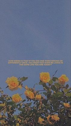 why don't we aesthetic song lyric wallpaper 💗 Mood Wallpaper, Iphone Background Wallpaper, Tumblr Wallpaper, Aesthetic Iphone Wallpaper, Flower Wallpaper, Wallpaper Quotes, Blush Wallpaper, Hipster Wallpaper, Screen Wallpaper