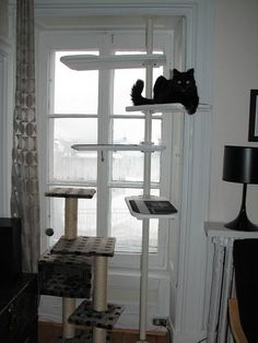 """""""IKEA's STOLMEN line may be intended for closets, but it also makes a pretty great system for putting together kitty gyms, like this one from IKEA Hackers."""" 7 IKEA Hacks Your Cats Will Love"""