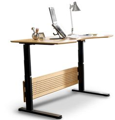 The Sit and Stand Desk.