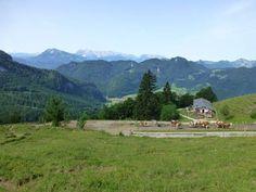 Rechenbergalm, Oberwössen im Chiemgau,#bayern,#bavaria, wandern, #shania,#seminare,#casa-shania
