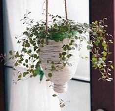 plant pot from plastic bottles
