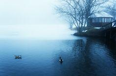 霧の日は不思議な空気が広がります。