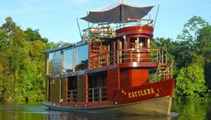 Peruvian Amazon River Cruise Partners With Treehouse Lodge for 6-Day Land & Sea Tour
