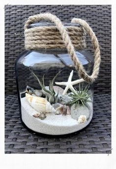 Luft Pflanzen DIY Ideen In Best Plants DIY Ideas And Inspiration For You The post Beste 70 + Air Plants DIY Ideen und Inspiration für Sie appeared first on Home Dekoration. Seashell Art, Seashell Crafts, Beach Crafts, Seashell Projects, Seashell Display, Seashell Wind Chimes, Beach Themed Crafts, Jar Crafts, Bottle Crafts