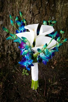 Gorgeous Wedding Bouquet Arranged With: Large White Calla Lilies, & Blue/Purple Dendrobium Orchids, Hand Tied & Wrapped With White Ribbon. Small Wedding Bouquets, Hydrangea Bouquet Wedding, Bride Bouquets, Bridesmaid Bouquets, Brooch Bouquets, Wedding Flower Guide, Wedding Flowers, Wedding Ideas, Bouquet Bleu