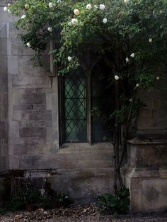 The porch of the church of Great St Mary in Cambridge. by Simon Webster via Flickr - Photo Sharing!