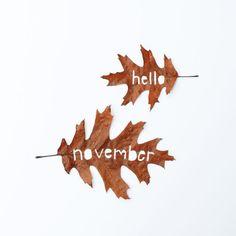»Hello November!« #typography #november