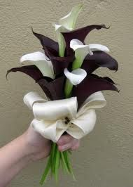 I would put Pink Calalily with the Black. munis the white Calalily bouquet / love those dark ones!