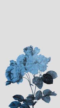 ideas for pastel blue aesthetic wallpaper iphone Baby Blue Aesthetic, Light Blue Aesthetic, Aesthetic Colors, Flower Aesthetic, Blue Wallpapers, Wallpaper Backgrounds, Wallpaper Lockscreen, Mood Wallpaper, Homescreen Wallpaper
