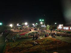 Feria de las Flores y el café en Boquete - Panamá