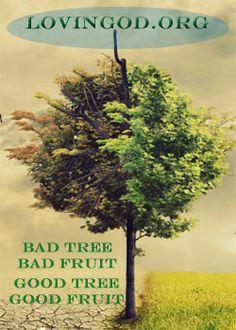 God Inside Minded or Rooted In Christ  Bad root bad fruit! Ephesians 4:22-24 lovinggod.org