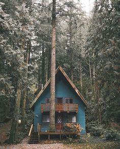 """""""Photo by @robstrok - Location: Washington #hutsandcabins #thetrickytree"""""""