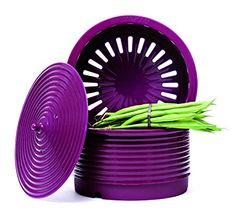 SiliconeZone Non-Stick Silicone Pagoda Steamer Pot Insert, Eggplant Purple Eggplant Purple, See On Tv, Kitchenware, Planter Pots, I Am Awesome, Cookware, Steamers, Shenzhen, Confidence