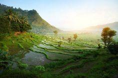 Beautiful Bali.....
