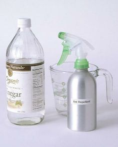5 Ways to Use White Vinegar
