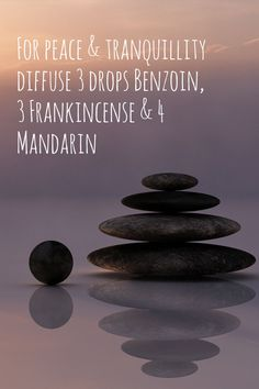 Are you feeling out of balance with your small business? Here are 3 simple actions you can take to make you feel more balanced Benzoin Essential Oil, Natural Essential Oils, Essential Oil Blends, Natural Oils, Natural Skin Care, Handmade Jewelry Business, Dry Body Brushing, Jewelry Making Tools, Strength