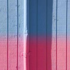 Ombré - Tom Windeknecht Photography