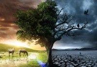 awesome Acerca de la vida y la muerte  http://www.lineadepensamiento.com.ar/?p=1405