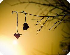 When You Feel Invisible | El amor, como cualquier sentimiento, siempre se aguanta desde un fino ...