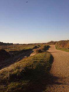 In het duinlandschap vindt u een kilometerslange fiets- en wandelpad.