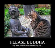 Image detail for -Dhamma Wheel • View topic - Funny Buddhism pictures