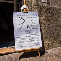 CriticAle: Ronciglione - Mostra di Marco Scataglini fino all'8 Giugno presso Iterland Corso Umberto I 54 Ronciglione VT