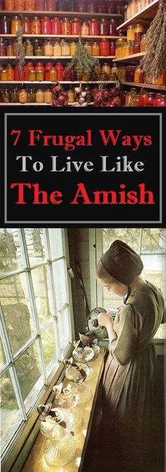 #frugal #amish