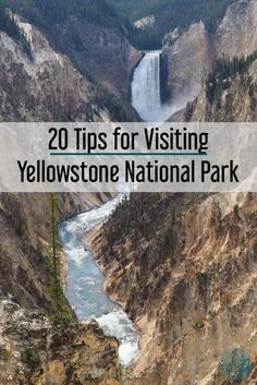 Yellowstone with kid