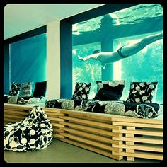Piscina aquario. Thats great